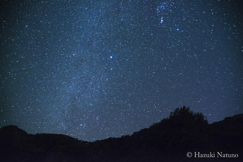 夜の海、星の声