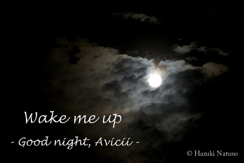 Wake me up – Good night, Avicii –