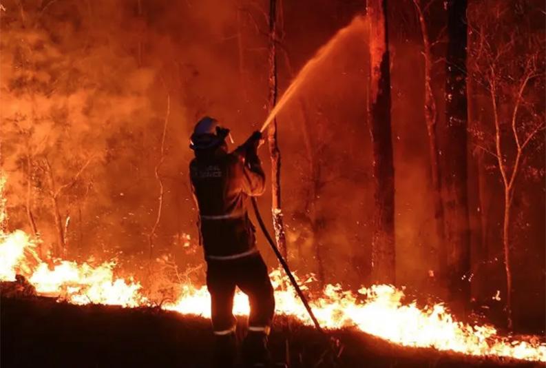 オーストラリアの山火事救援活動にお金を寄付できる8つの方法